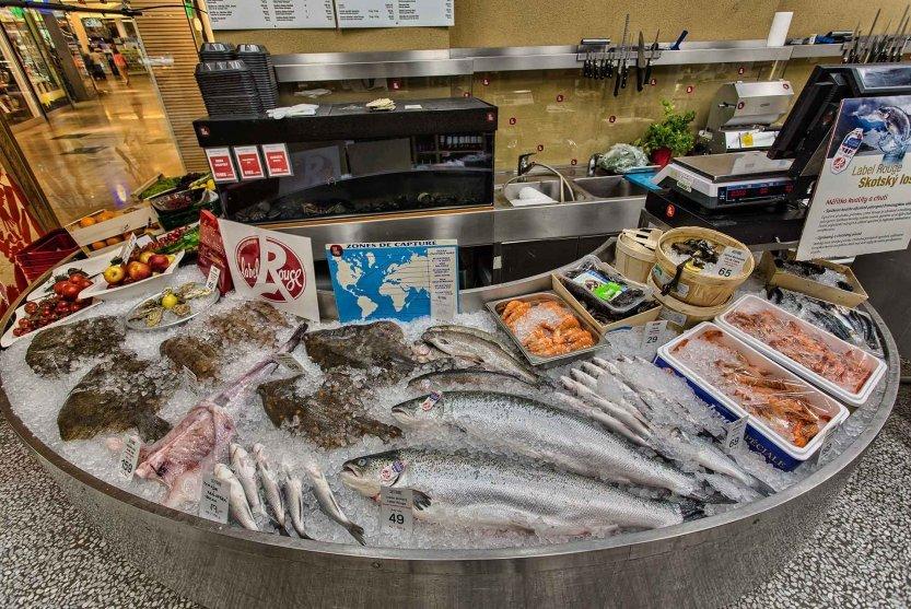 seefish2